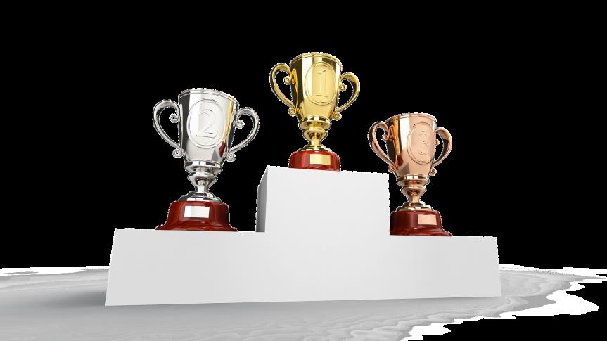 Nabór wniosków o przyznanie nagrody lub wyróżnienia Burmistrza Siechnic  za osiągnięcia sportowe za rok 2020