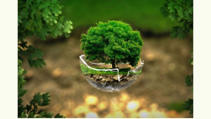 Zarząd Powiatu Wrocławskiego ogłasza II nabór wniosków o udzielenie dotacji celowych w 2021 roku na inwestycje z zakresu ochrony środowiska